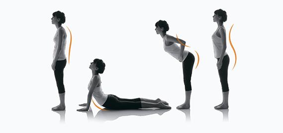 Программа растяжки всего тела